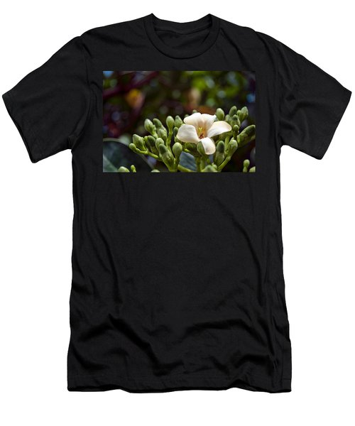 Papaya Flower Men's T-Shirt (Athletic Fit)