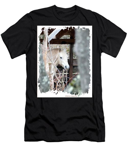 Paso Fino Stallion Close-up Men's T-Shirt (Athletic Fit)