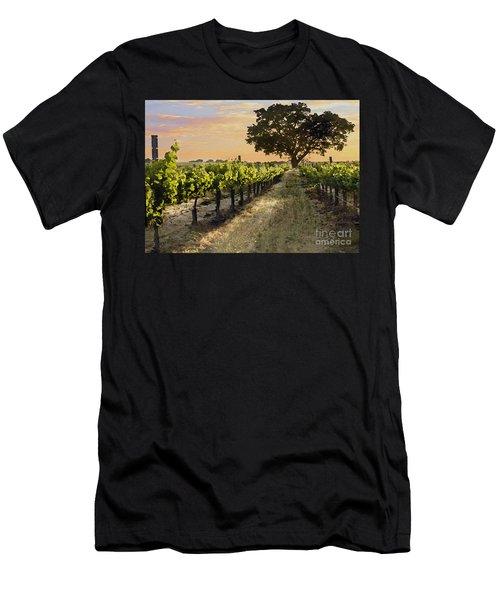 Paso Vineyard  Men's T-Shirt (Athletic Fit)