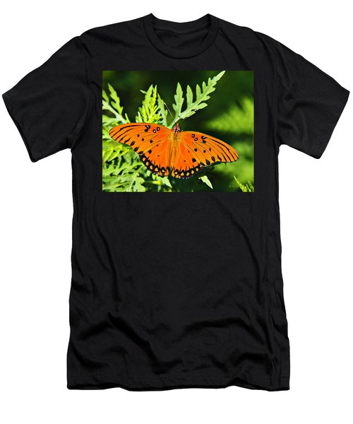 Passion Butterfly Men's T-Shirt (Slim Fit) by Walter Herrit