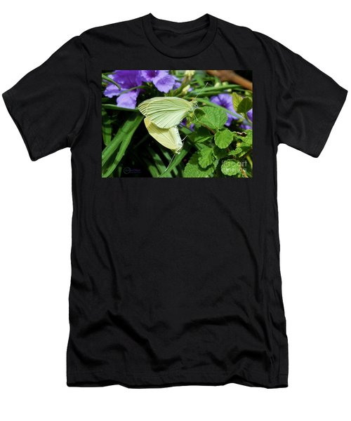 Passion Of The Butterflies Men's T-Shirt (Athletic Fit)