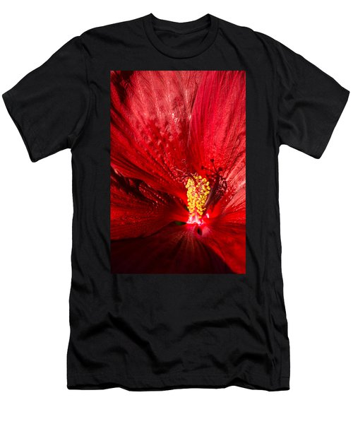 Passionate Ruby Red Silk Men's T-Shirt (Athletic Fit)