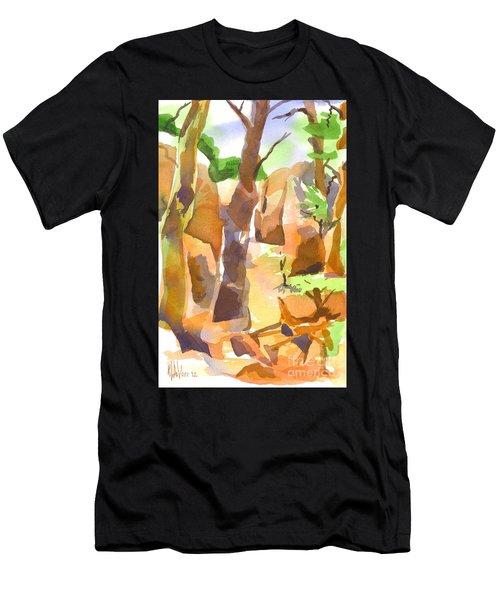 Pathway Through Elephant Rocks Men's T-Shirt (Athletic Fit)