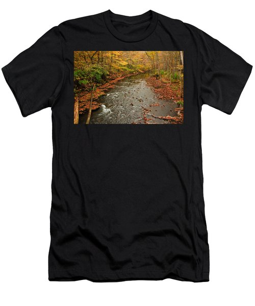 Peaceful Fall Men's T-Shirt (Athletic Fit)