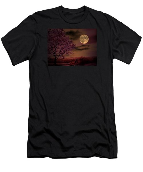 Peaceful Valley Men's T-Shirt (Slim Fit) by Robert McCubbin