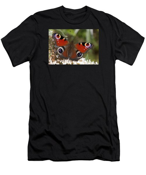 Peacock Butterfly Men's T-Shirt (Athletic Fit)
