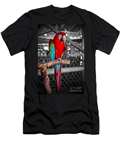 Peanut  Anyone Men's T-Shirt (Athletic Fit)
