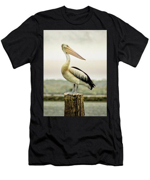 Pelican Poise Men's T-Shirt (Athletic Fit)