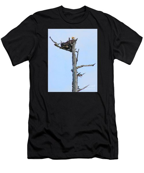 Perched Eagle Men's T-Shirt (Athletic Fit)