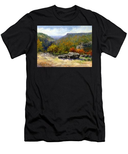 Petit Jean View From Mather Lodge Men's T-Shirt (Athletic Fit)