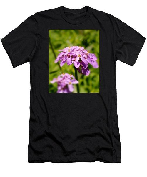 Petite Parasol Men's T-Shirt (Athletic Fit)