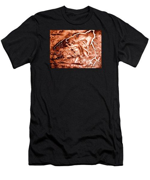 Phaethon Men's T-Shirt (Athletic Fit)