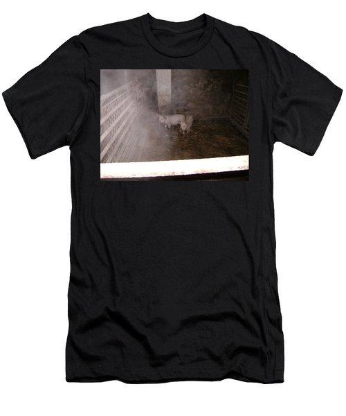 Piggies Men's T-Shirt (Athletic Fit)