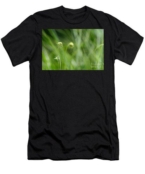 Pincushion Flower Buds Men's T-Shirt (Athletic Fit)