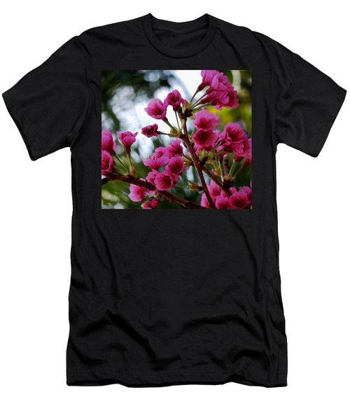 Pink Cherry Blossoms Men's T-Shirt (Slim Fit) by Pamela Walton
