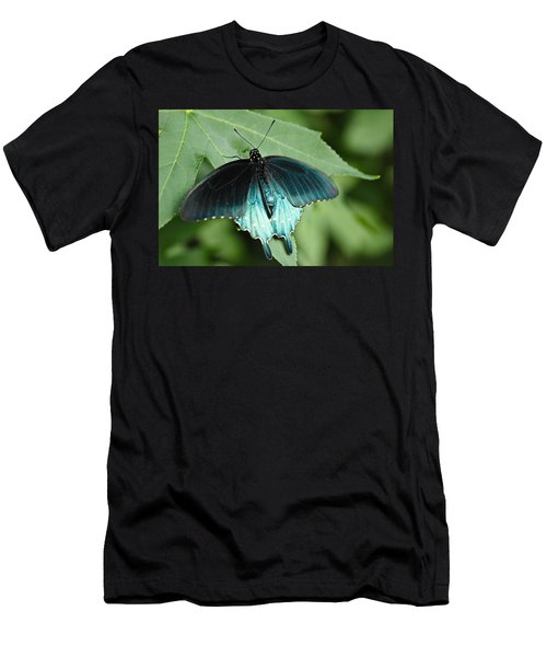 Pipevine Swallowtail Men's T-Shirt (Athletic Fit)