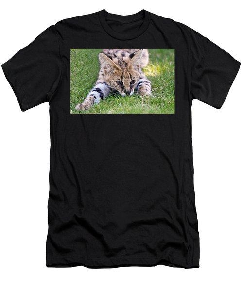 Playful Serval Men's T-Shirt (Athletic Fit)