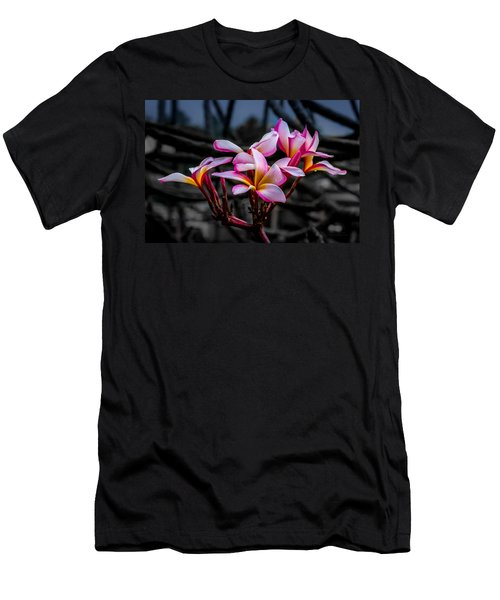 Plumeria Rainbow Ali Men's T-Shirt (Athletic Fit)