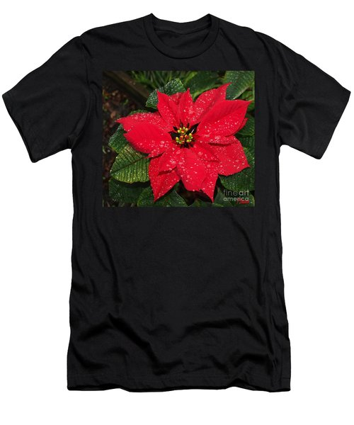 Poinsettia - Frozen In Time Men's T-Shirt (Athletic Fit)