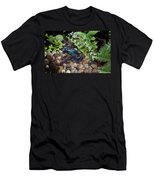 Poison Dart Frog Men's T-Shirt (Slim Fit) by Carol Ailles
