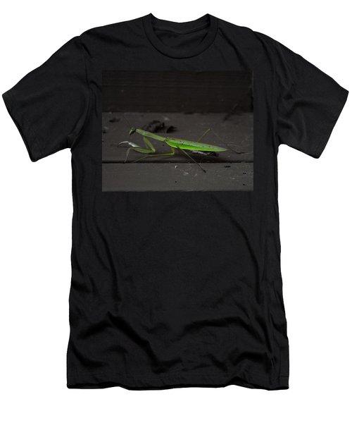 Praying Mantis 2 Men's T-Shirt (Athletic Fit)