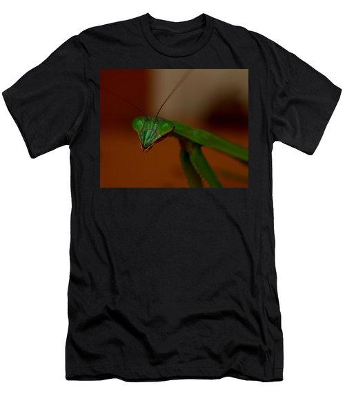Praying Mantis Closeup Men's T-Shirt (Athletic Fit)