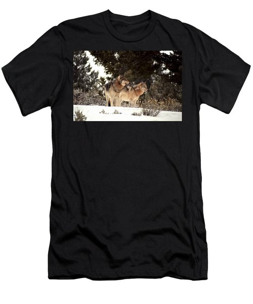 Predators Men's T-Shirt (Slim Fit) by Sharon Elliott