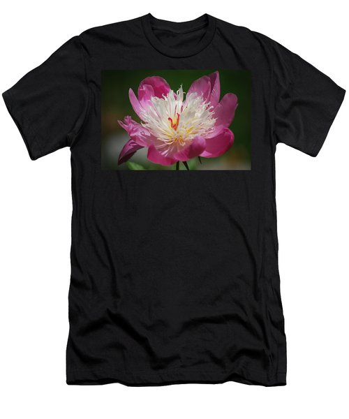 Pretty In Pink Men's T-Shirt (Slim Fit) by Lori Tambakis
