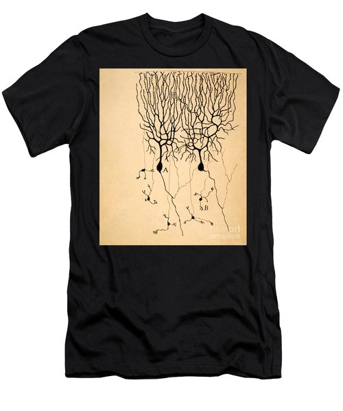 Purkinje Cells By Cajal 1899 Men's T-Shirt (Athletic Fit)