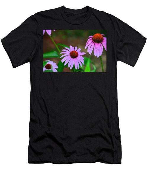 Purple Coneflower - Echinacea Men's T-Shirt (Athletic Fit)