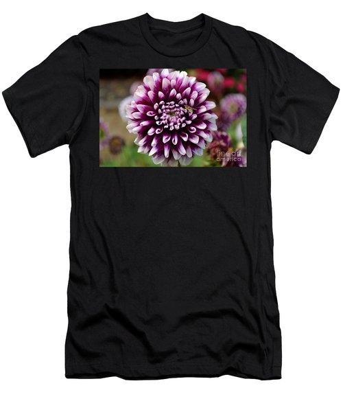 Purple Dahlia White Tips Men's T-Shirt (Athletic Fit)