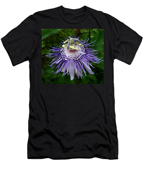 Purple Passionflower Men's T-Shirt (Athletic Fit)