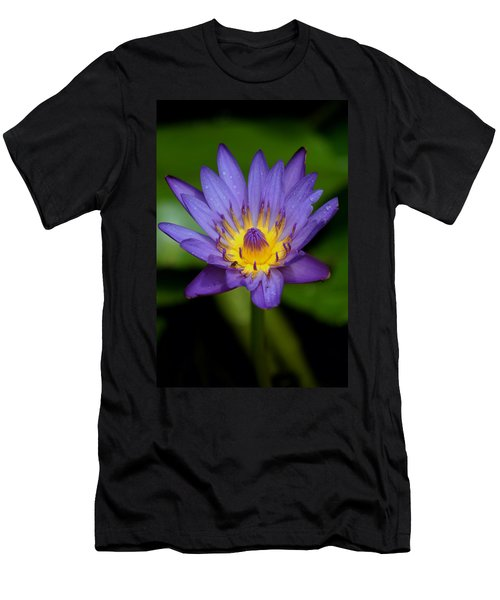 Purple Water Lily Men's T-Shirt (Slim Fit) by Pamela Walton