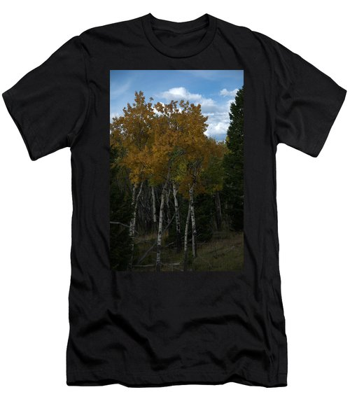 Quaking Aspen Men's T-Shirt (Athletic Fit)