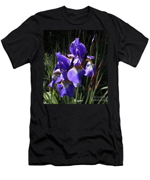 Quebec Provincial Flower Men's T-Shirt (Athletic Fit)