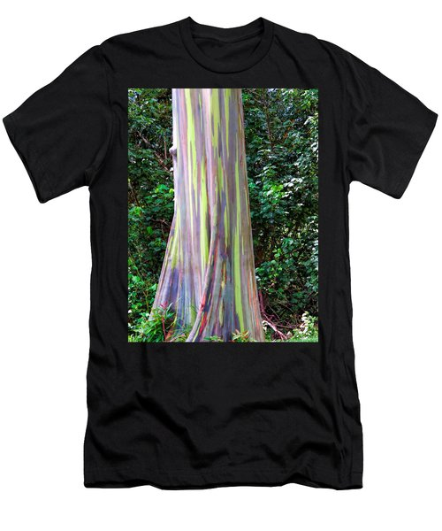 Rainbow Eucalyptus 3 Men's T-Shirt (Athletic Fit)