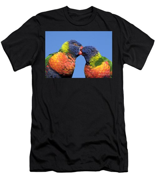 Rainbow Lorikeets Men's T-Shirt (Athletic Fit)