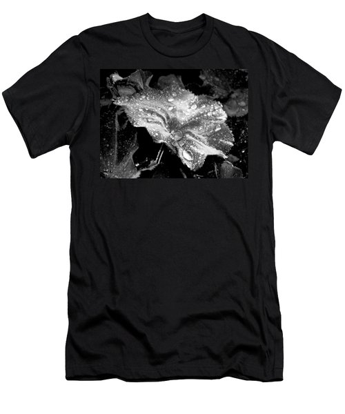 Raindrop Covered Leaf Men's T-Shirt (Athletic Fit)