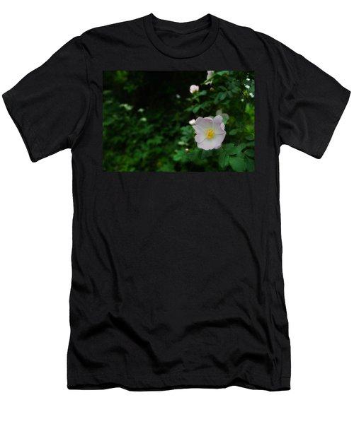 Ranunculus Men's T-Shirt (Athletic Fit)