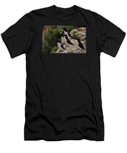 Razorbill Cliff Men's T-Shirt (Slim Fit) by Dreamland Media
