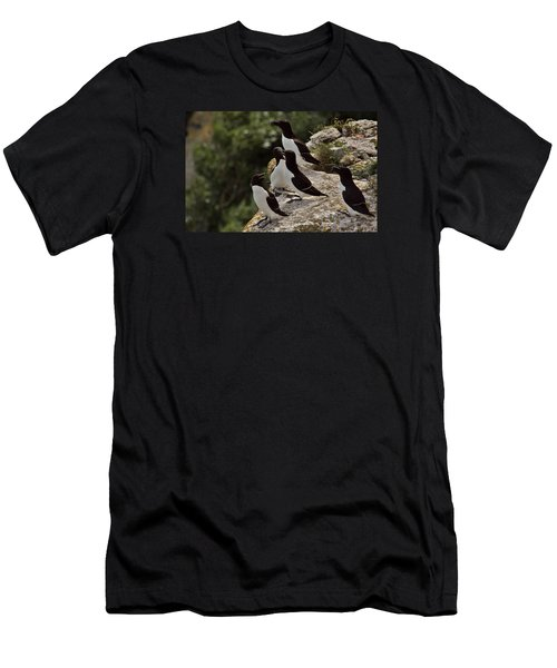 Razorbill Cliff Men's T-Shirt (Athletic Fit)