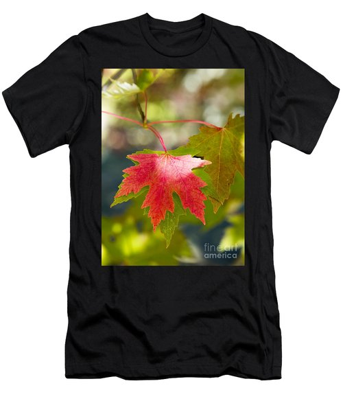 Red And Green Men's T-Shirt (Athletic Fit)