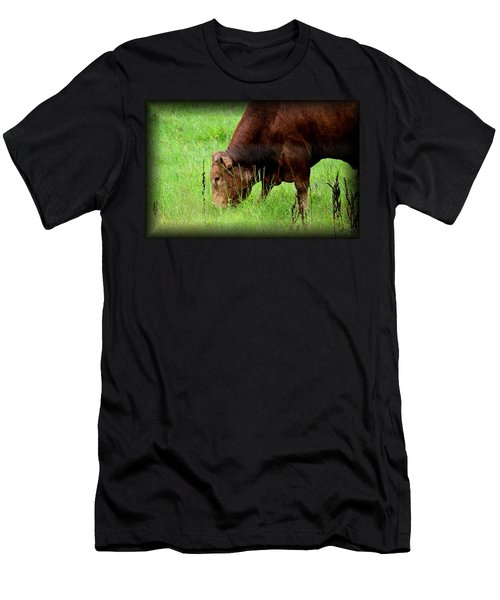 Red Brangus Bull Men's T-Shirt (Athletic Fit)