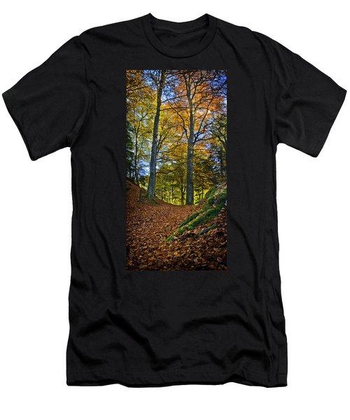 Red Carpet In Reelig Glen During Autumn Men's T-Shirt (Athletic Fit)