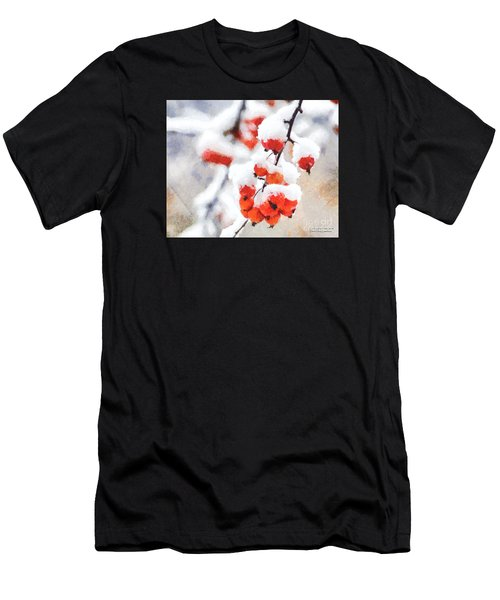 Red Crabapples In The Winter Snow - A Digital Painting By D Perry Lawrence Men's T-Shirt (Athletic Fit)