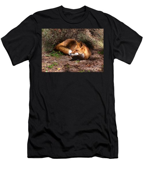 Red Fox Resting Men's T-Shirt (Athletic Fit)