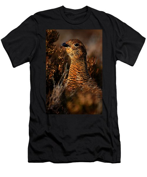Red Grouse Men's T-Shirt (Athletic Fit)