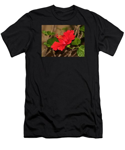 Red Hibiscus Flower Men's T-Shirt (Athletic Fit)