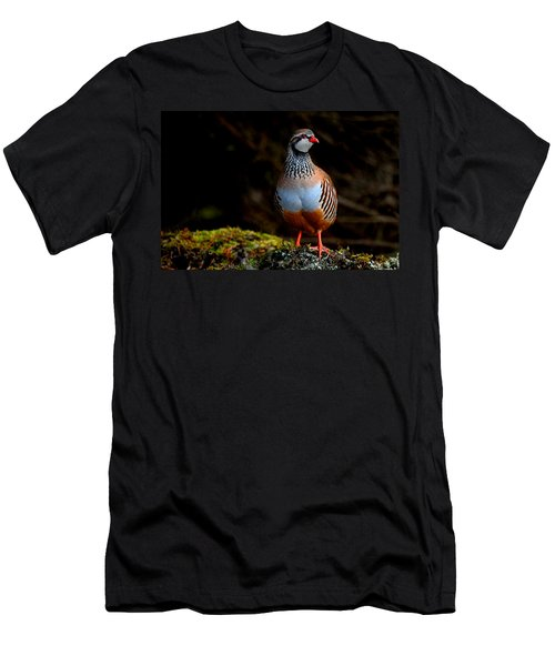 Red-legged Partridge Men's T-Shirt (Athletic Fit)