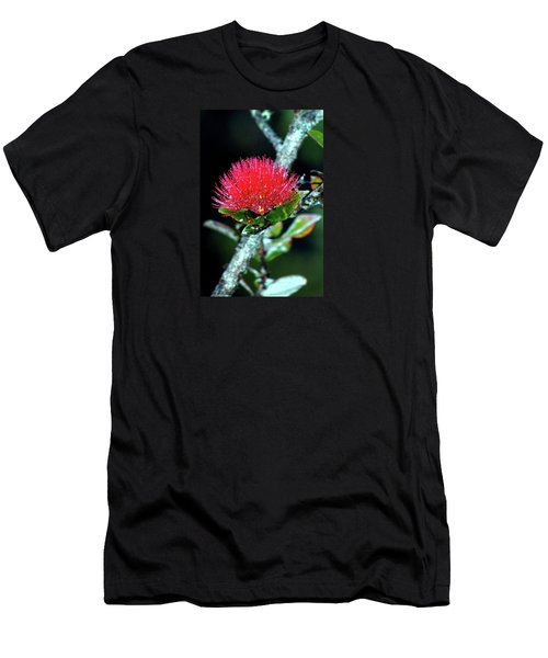 Men's T-Shirt (Slim Fit) featuring the photograph Red Lehua  Kawaiko'olihilihiokalikolehua by Lehua Pekelo-Stearns